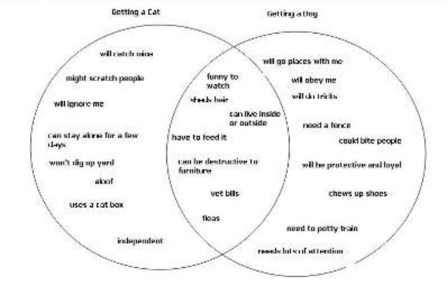 Resume Essay Writing